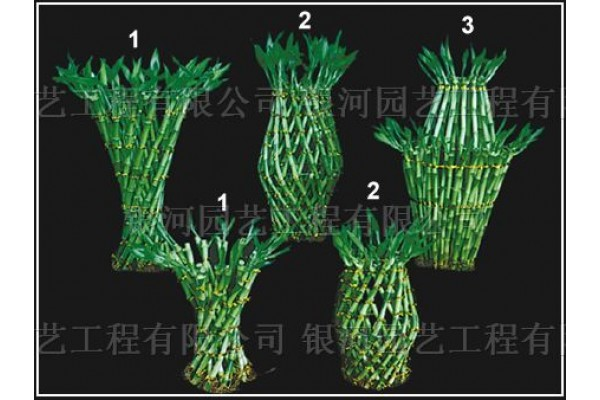 Lucky Bamboo Braided Basket